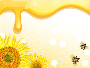 Sunflowers and bees on honey background