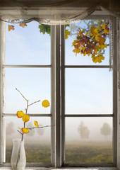 Autumn landscape viewed through window