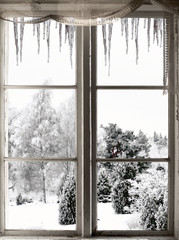 Winter landscape viewed through window