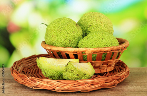 Osage Orange fruits (Maclura pomifera) in basket,