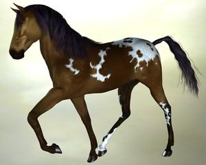 Horse dark brown
