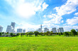 Landscape grass prospects the Yokohama city buildings in Japan - 57011087