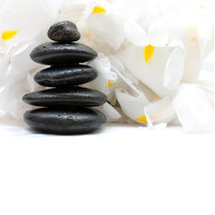 Black stones and white flowers, alternative medicine and treatme