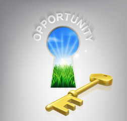 Key Opportunity Concept