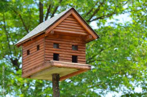 home for birds