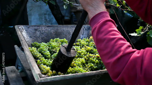 Manually pressing grapes