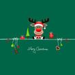 Christmas Reindeer Gift & Symbols Green