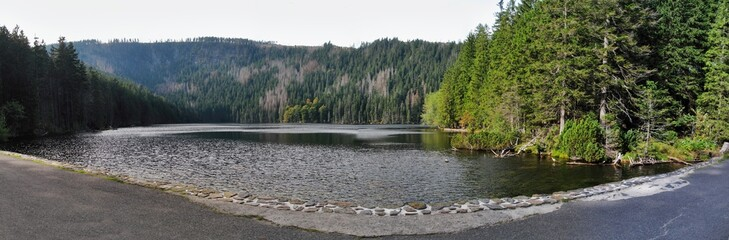 Cerne jezero lake in Sumava near germany border