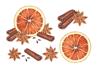 Watercolor illustration of christmas spices