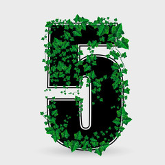 Ivy leaf decorated vector number five