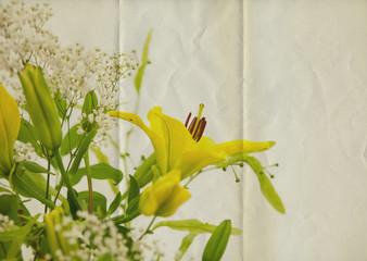 lilies paper texture