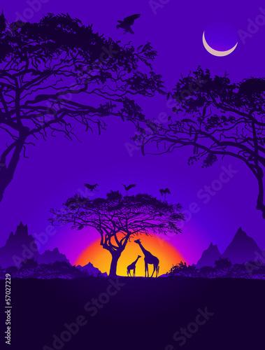 Deurstickers Violet African sunset