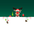 Background Christmas Rudolph Gift & Symbols Green