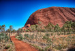 Gorgeous colors of Outback Rocks and vegetation, Australia