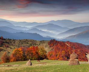 Colorful autumn sunset in the Carpathian mountains. Ukraine, Eur