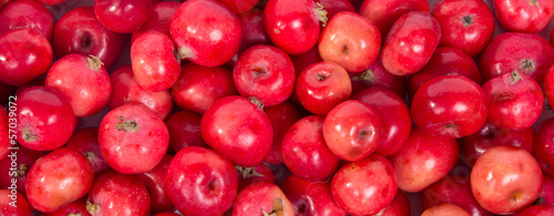large group of red apples background