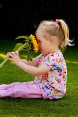 Kind mit Sonnenblume im Garten im Sommer