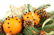 christmas composition with oranges and fir tree, isolated