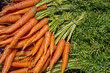 Fresh orange carrots piled in a bundle