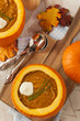 Homemade Organic Pumpkin Soup