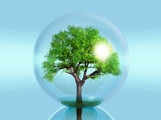 green tree in a bubble