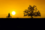 cyclist silhouette sunset