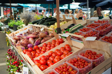 tomato stand at green market