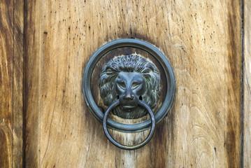 Italian door knocker: lion
