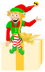 Weihnachts Wichtel / Elf