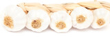 Knoblauchumgebung in vollem Weiß