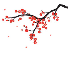 Plum blossom in Chinese painting style