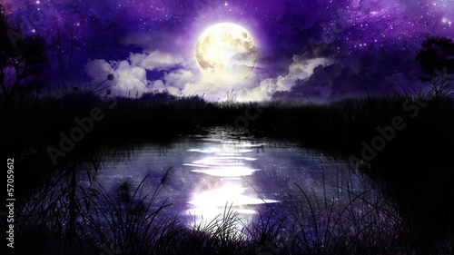 Magic Night over the pond 100% loop HD1080p