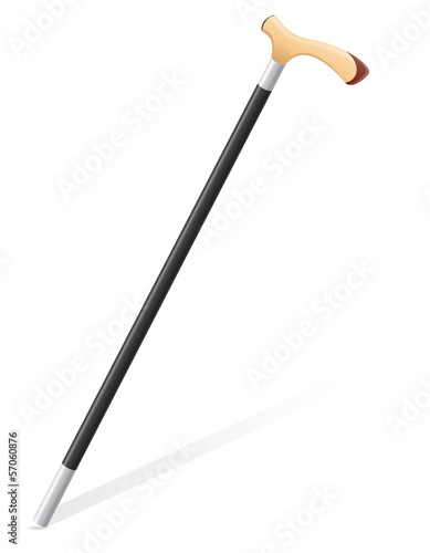 walking stick vector illustration