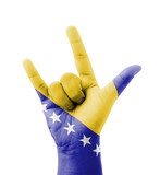 Hand making I love you sign, Bosnia and Herzegovina flag painted