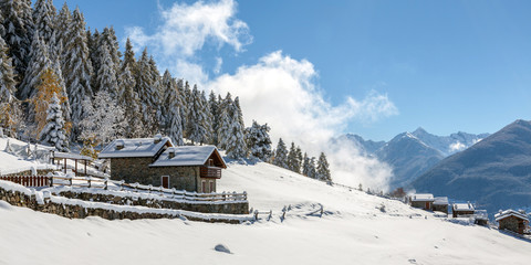 paesaggio con neve fresca
