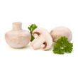 Champignon mushroom and fresh parsley