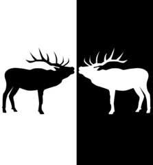 vector black white and black deer
