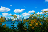 Toronto Skyline on a Beautiful Day