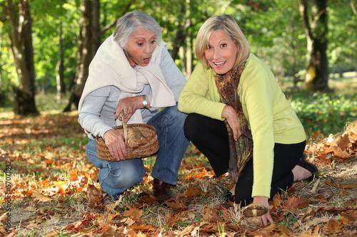 Women picking mush