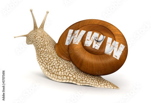 Snail and WWW (clipping path included)
