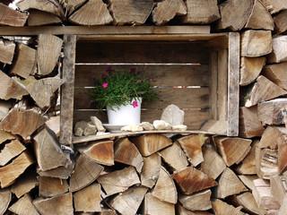 Holzstapel mit Blumentopf