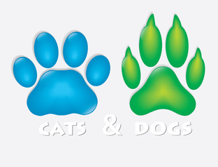 Cat and dog paw