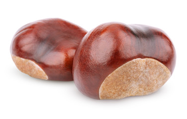 Two chestnuts isolated on white with clipping path