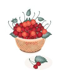 Brown Basket of Fresh Red Cherries
