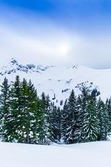 Winter in the swiss alps.