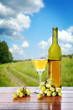 Bottle of wine and grape bunches against beautiful landscape