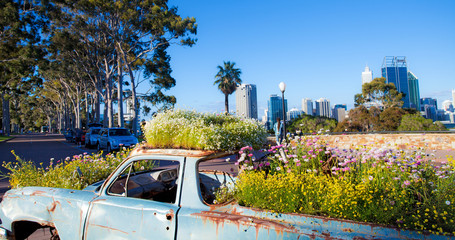 Kings Park, Perth, Australia Occidentale