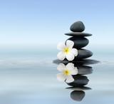 Kamienie zen z białym kwiatem nad wodą - 57089868