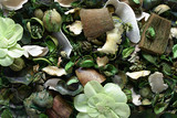 Background texture of aromatic potpourri