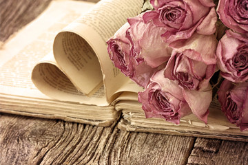 Dry roses on an old book